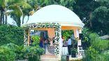 Música bodas, eventos, funerales, misas, CIVIL foto 1