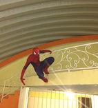 show hombre araña(spiderman) foto 2