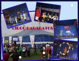 Carpa de Circo para Fiestas y Eventos _0