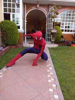 show hombre araña(spiderman)